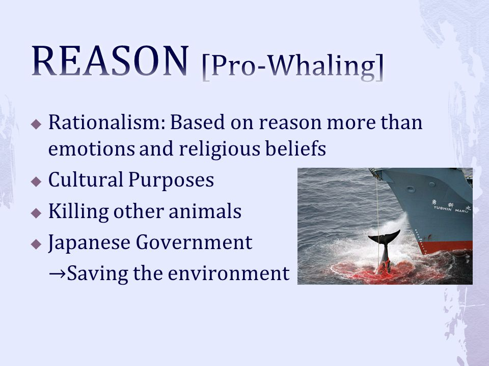 REASON [Pro-Whaling] Rationalism: Based on reason more than emotions and religious beliefs. Cultural Purposes.